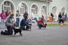 Oblastní klubová výstava s ČKŠ 15.9.2012_3