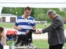 XX.Slezská výstava psů Hlučín 9.5.2015_1