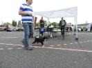 XX.Slezská výstava psů Hlučín 9.5.2015